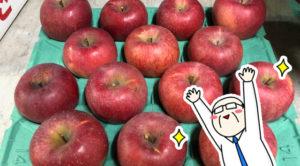 今年も須坂の美味しいりんごを頂きました!!