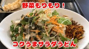 『おやじぶら』第13発目!サキベジも兼ねて罪悪感も薄くなるサラダうどん!!
