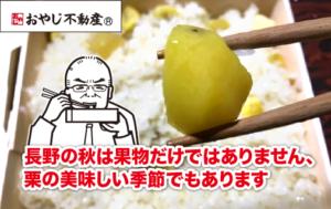 【おやじぶら第21弾】長野の秋は果物だけではありません、栗の美味しい季節でもあります